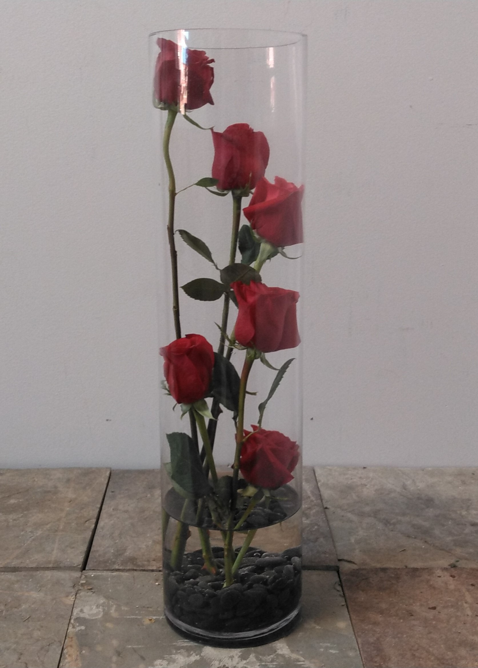 Roses in cylinder