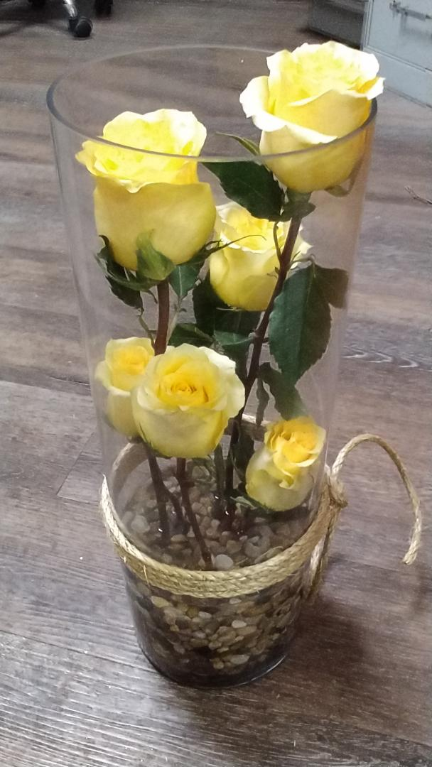 Contempory yellow roses