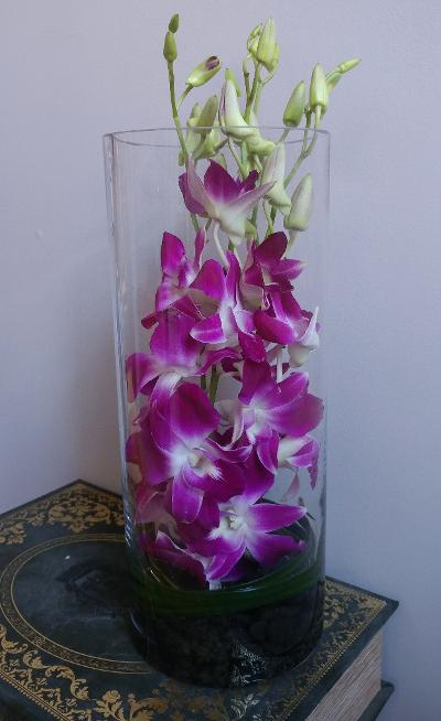 Orchids in cylinder